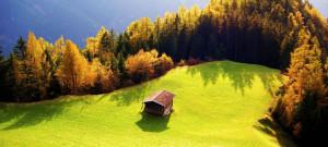 greenzone-landscape-01